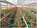 Industries We Serve/Growers/Profit2